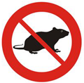 Pest control and treatments in Hertford
