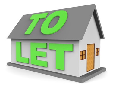 Pest Control Services for Landlords